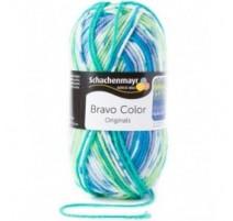 Schachenmayr Bravo Color