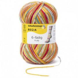 Regia 6-fädig Color