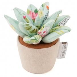 Alfiletero - Plant Life