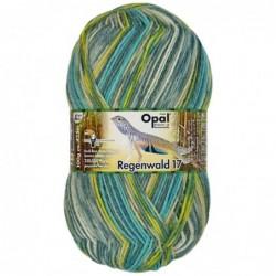 Opal Regenwald XVII 6-ply